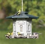 pictures of Bird Feeder Wren