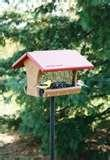 photos of Bird Feeders Knoxville Tn