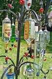 Bird Feeders Art pictures