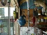 pictures of Fence Bird Feeders