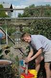 Fence Bird Feeders