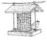 pictures of Homemade Bird Feeders Bird Feeder Plans