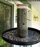 photos of Homemade Bird Feeders Bird Feeder Plans