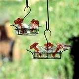 images of Bird Feeders Tucson Az