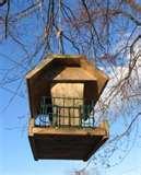 Homemade Bird Feeders Bird Feeder Plans photos