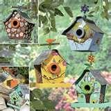 pictures of Bird Feeders Office