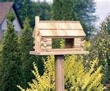 Bird Feeders Grade 1 photos