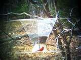 photos of Bird Feeder Pulley System