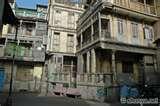 Bird Feeder Ahmedabad Gujarat photos