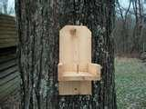 Bird Feeders Out Of Wood images