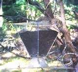Bird Feeder Pulley System photos