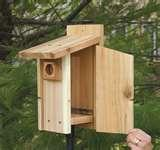 pictures of Bird Feeders Out Of Wood