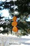 Bird Feeder Orange photos