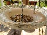 Bird Feeder Glass Plate pictures