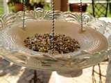 Bird Feeder Glass Plate images