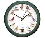 pictures of Audubon Bird Feeders