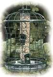 Caged Bird Feeders