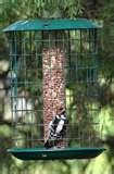 Caged Bird Feeders pictures