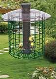 Caged Bird Feeders photos