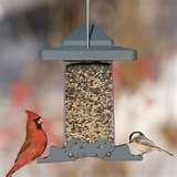 images of Squirrel Guards For Bird Feeders