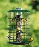 Baffles For Bird Feeders pictures