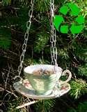 Teacup Bird Feeder pictures