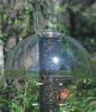Baffles For Bird Feeders