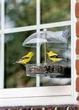 Droll Yankee Bird Feeders photos