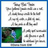 pictures of Teacup Bird Feeder