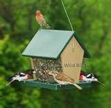 photos of Recycled Bird Feeders