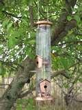 photos of Thistle Bird Feeder