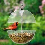 photos of Buy Bird Feeders