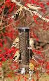Wild Birds Unlimited Bird Feeders pictures