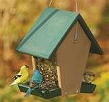 pictures of Wild Birds Unlimited Bird Feeders