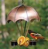 photos of Oriole Bird Feeder