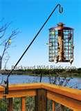 Squirrel Proof Bird Feeder Pole images
