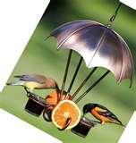 Oriole Bird Feeder photos
