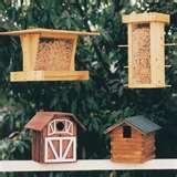 pictures of Bird Feeder Plan