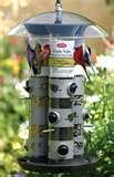 pictures of Tube Bird Feeders