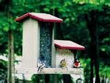 photos of Hopper Bird Feeder
