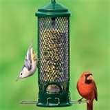 Tube Bird Feeders pictures