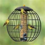 Bird Cage Feeders