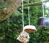 pictures of Recycled Bird Feeder
