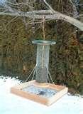 photos of Bird Feeder Seed
