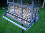 photos of Squirrel Bird Feeder