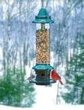 images of Squirrel Bird Feeder