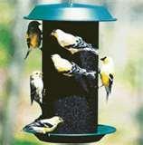 Bird Feeder Seed