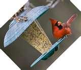 images of Cardinal Bird Feeders