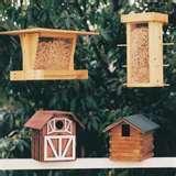 Bird Feeders Plans pictures