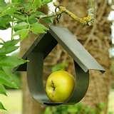 pictures of Hanging Bird Feeder